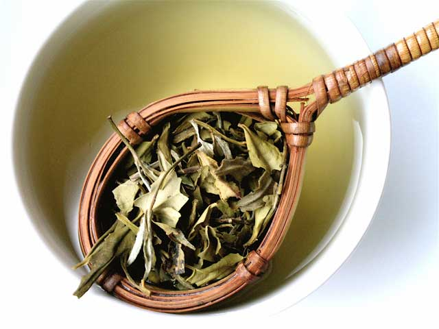 Fiori bianchi di Peonia : alla scoperta del tè Bianco