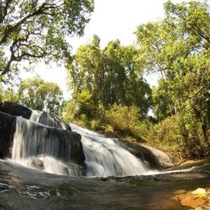 Dal Malawi