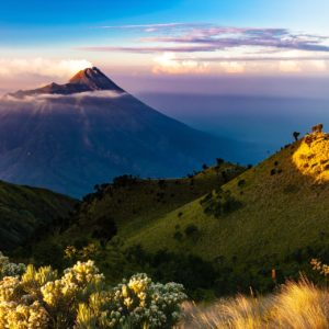 Dall'Indonesia